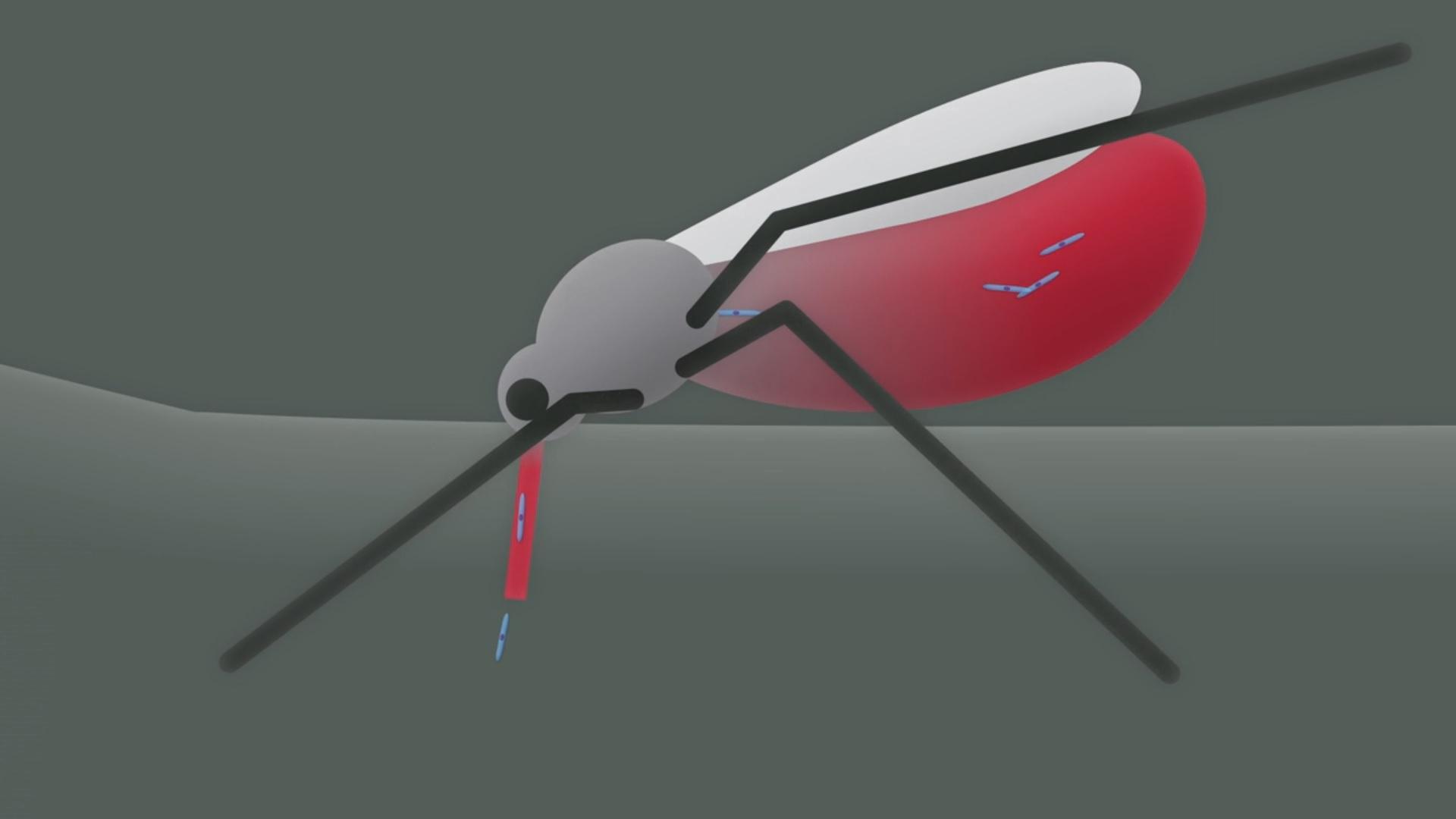 Malaria: facciamo chiarezza