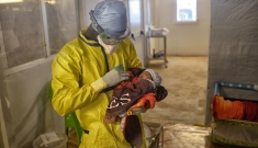 MSF Ebola Treatment Centre in Conakry, Guinea